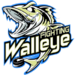 Fighting Walleye C3