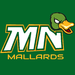 Minnesota Mallards
